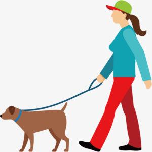 Venčení psů